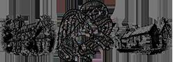 St Luke's logo